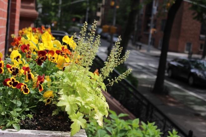brooklen flower box