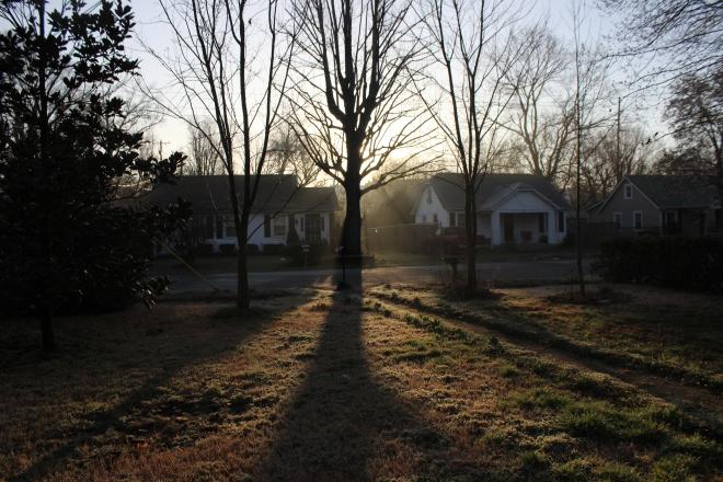 Light in the Yard